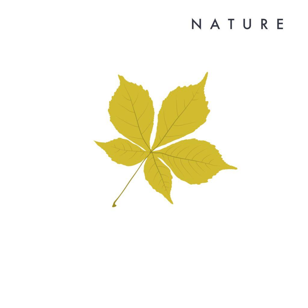 Nature Secrets de Beauté